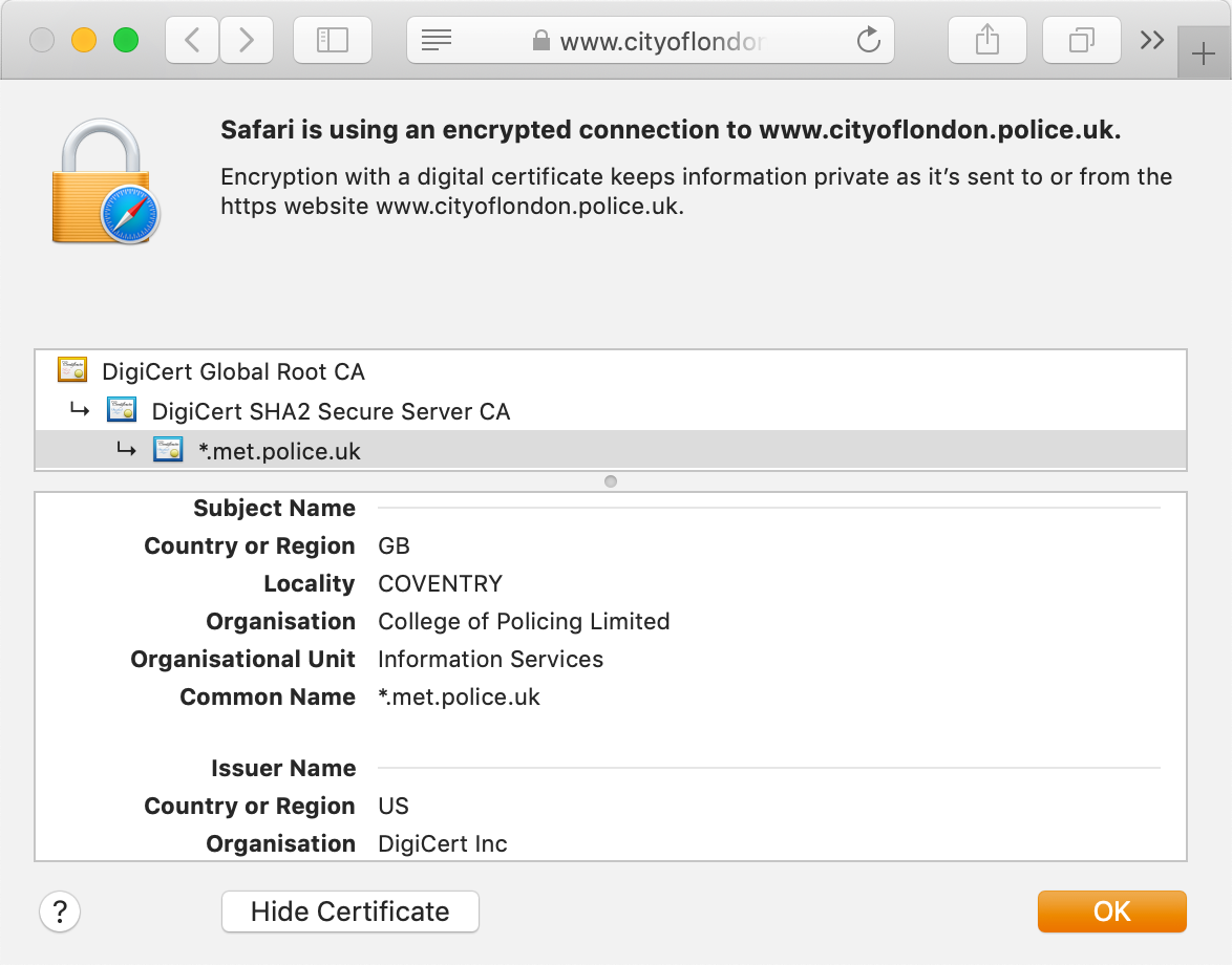 Look of the GeoTrust Standard DV certificate in your browser's address bar