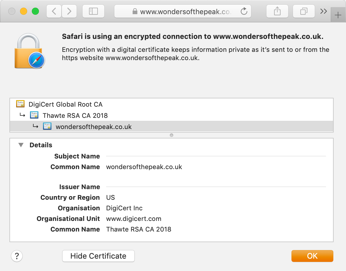 Look of the Thawte SSL123 Wildcard certificate in your browser's address bar